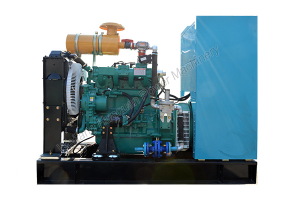 30kw Home Natural Gas Generator From Chinese