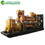 China Supplier High Quality Power Biogas Generator for Sale
