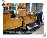 China Hot Sale 300kw Special Biogas Generator Set with 6190 Engine Lvhuan