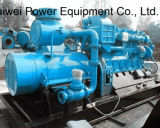 CHP Power Plant, Green Energy Generating Power Plant Natural Gas Generator