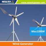 400W High Quality Chinese Wind Generator