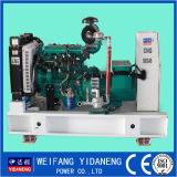 Yidaneng 20kw Natural Gas Generator Price