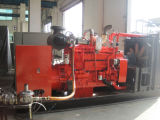 Biogas Generator/CHP/Biomass Power Generator/Natural Gas Genset/LPG Generator