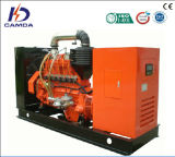 25kw to 200kw Camda Biogas Generator Set / Natural Gas Generator Set (H series)