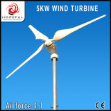 Residential Rooftop Wind Turbines Price 5 Kw