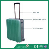 Hot Sale Medical Health Care Portable Electric 8L Oxygen Concentrator (MT05101051)