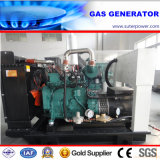 Water Cooled 55kVA/44kw Natural Gas Generator by Cummins Engine