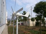 Horizontal Axis Wind Power Generator with CE Certificate (100W-20KW)