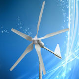 High Efficiency 1000W Wind Power Generator, 1kw Wind Generator with 5PCS Blades