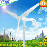 Small Wind Turbine Generator for Home Use 300W/600W/800W/1200W/1600W Wind Turbine Generator