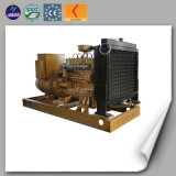 Water Cooled Turbocharging LPG/ Natural Gas Generator/Electric Generator