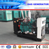 Water Cooled 40kVA/30kw Gas Generator with CE Approved