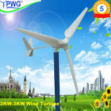 2000W Magnetic Spiral Wind Power/ Best Electric Generator