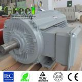 Pmg! Permanent Magnet Generator for Wind Power and Water Power AC 3phase