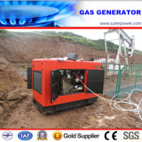 30kVA/24kw Silent Natural Gas Power Generator with CE Approved