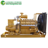 Biomass Power Generator with Low Price