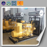 Low Consumption Environmentally 50kw Natural Gas Generator