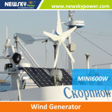 China Supplier Alternative Energy Wind Generator
