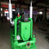 CHP Methane Natural Gas Generator Electric Power Generator (10kw - 500 kw) with Low Noise