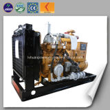 Hot Sale Biomass Gasification Power Plant Type Small Power Biomass Generator Price