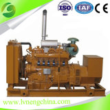 Factory Supplied Big Power Water Cooled Natural Gas/Biogas/ Biomass Power Generator (10-2MW)