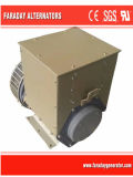 Rated Voltage: 380~480V Stamford Alternators AC Brushless Generators (40kw)
