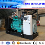 Natural Gas Generator 180kVA/144kw by Cummins Power Generator