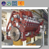Natural Gas Powered Generator Set Backup Power with Water Cooled Engine 1000kw to Russia