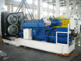 Natural Gas Generator with  800kw / 1000KVA (RCT-800GF)