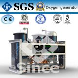 Professional Manufacture of Psa Oxygen Generator (PO)