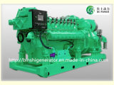 Mtu Biogas Power Generator Set