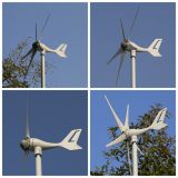 12V 24V AC Wind Generators (MINI 5 400W)