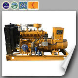 Most Popular New Energy in Italy Biomass Genset (20KW)