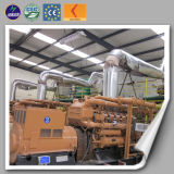 Factory Supplied Big Power Water Cooled Natural Gas/Biogas/ Biomass Power Generator (10kw-2MW)