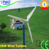 High Power 2kw Wind Turbine / Wind Power Generator
