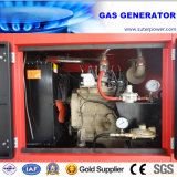 Factory Directly Sale 30kVA/24kw Water Cooled Gas Generator