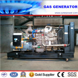 250kVA/200kw Electric Power Natural Gas Generator with ATS