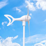 300W Dolphin Wind Driven Generator Turbine High Quality Low Price