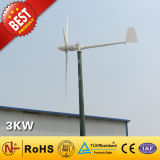 Wind Turbine/Wind Power Generator (3kw)