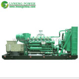 China Medium Size Biogas Generator for Biogas Generation