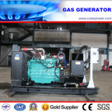 163kVA/130kw Biogas/LNG/LPG/CNG/Natural Gas Generator with Cummins Engine