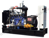 Natural Gas Generator with Stable Quality (10kw- 500kw) Price