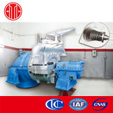 Micro Steam Turbine Generator for Industrial Plant