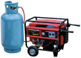 CE EPA Portable Home Use LNG LPG Generator