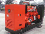 180kw Marsh Gas/Natural Gas/Biomass Generator Set