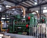Hot Selling Coal Gas Power Generating Plant with CHP