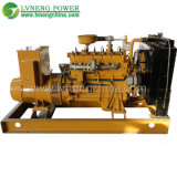 Green Power 10-1000kw Low Consumption Biogas Generator