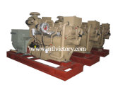 30kVA~1030kVA Us Cummins Diesel Engine Marine Generators