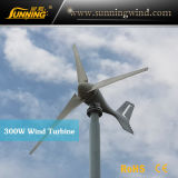 Low Price Permanent Magnet Wind Turbine for Boat