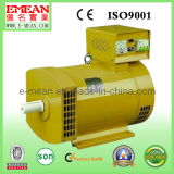 12kw Stc Best Price Series Alternator